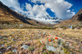 View of paso punta union on m santa cruz trek peru Royalty Free Stock Image