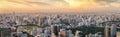 View poit of Bangkok from Mahanakorn tower