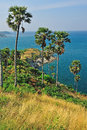View of a promthep cape phuket island thailand Royalty Free Stock Photography