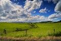 View of Purakaunui Falls Road Royalty Free Stock Photo