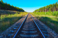 View of railroad track with green forest on both sides Royalty Free Stock Image