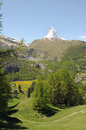 View from riffelalp of the matterhorn in swiss alps Stock Photography