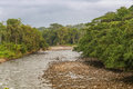 View of the river between the jungle Royalty Free Stock Photo