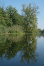 View on the river ukraine Stock Photography