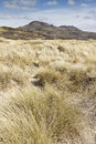View of sand dunes with mountains near porthmadog wales Royalty Free Stock Photos