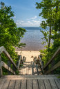 View of sandy beach and ocean from boardwalk vertical wooden tree lined with steps north carolina shore Stock Photo