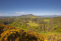 View of scott s in the scottish borders the united kingdom Stock Images