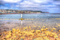 View from shaldon to teignmouth devon england uk in hdr with rocks and clear sea Royalty Free Stock Images