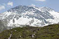 View from the sommerbergalm at the hoher riffler with snow and ice covered is a metre high mountain in zillertal alps on eastern Royalty Free Stock Photos