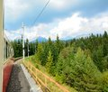 View from speeding train Royalty Free Stock Photo