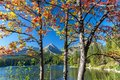 Autumn at Strbske tarn, High Tatras mountains, Slovakia