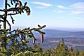 View from the summit of the Brocken Royalty Free Stock Photography