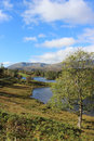 View of tarn hows in the english lake district looking towards coniston old man mountain with foreground photograph taken from one Royalty Free Stock Photo
