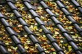 A Tiled Roof With Autumn Leaves Royalty Free Stock Photo