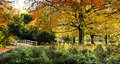 View to entrance of park in autumn Stock Photography
