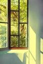 View To Garden Through Window