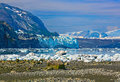 The view to Margerie and Grand pacific glaciers from Tarr inlet, Glacier Bay National Park, Alaska Royalty Free Stock Photo