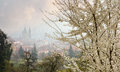 View to prague st nicolas dome at spring from petrin with trees in blossom morning mist above the town Stock Photo