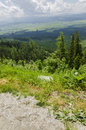View to the valley high tatra slovakia nice with forests and fields strbske pleso Royalty Free Stock Images