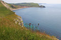 View to worbarrow bay dorset and coastline Stock Images
