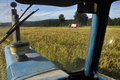 View from the tractor mowing triticale grown for silage while wagon pics up crop west coast new zealand Stock Photography