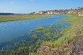 View upper part back bay wetland estuary newport beach california area important estuary southern california coastline which can Stock Images
