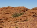 View of the watarrka national park one domes mountains around kings canyon in northern territory in australia opposite a blue sky Stock Image
