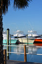 View of Colorful Luxury Yachts from Pier Royalty Free Stock Photo