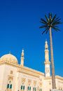 View of Zabeel Mosque in Dubai Royalty Free Stock Photo