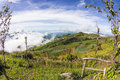 Viewpoint at phu tub berk in thailand Royalty Free Stock Photo