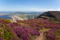 Views from Conwy Mountain Royalty Free Stock Images