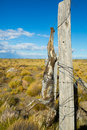 Views of steppe landscape of Pampas, Patagonia