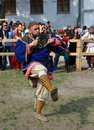 Viking Royalty Free Stock Images