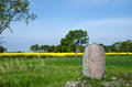Viking age stone springtime view over a runic from the at karlevi on the island oland in sweden Royalty Free Stock Image