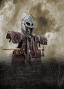 Viking armour poster