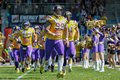 Vikings vs panthers vienna austria april dl harald zipfelmayer leads the team of the vienna into the stadium Royalty Free Stock Images