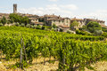 Villa a Sesta (Chianti) - The village and the vineyards Royalty Free Stock Photo
