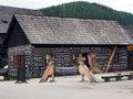 Village, Čičmany