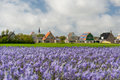 Village den hoorn at dutch texel small with white church wadden island Stock Photos