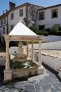 Village Fountain Royalty Free Stock Photo