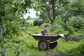 In a village in the garden boy sitting in the cart. Royalty Free Stock Photo