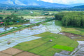 Village hill rice field in rural thailand Stock Photos