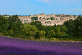 Village and lavender in Provence Royalty Free Stock Photo