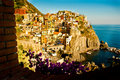 Village of Manarola Royalty Free Stock Photos