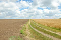 Village road in wheat field under cloudy sky. Royalty Free Stock Photo