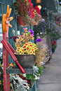 Village Street with colorful flowers Royalty Free Stock Photo