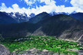 Villages and fields green rolling mountains snow mountains of rural countryside with green Stock Photography