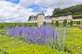 Villandry Castle (Chateau) and gardens. Stock Photos