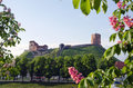 Vilnius symbol - historical castle and tower of Gediminas in spring, Lithuania Royalty Free Stock Photography