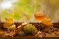 Vin blanc d automne Photo libre de droits